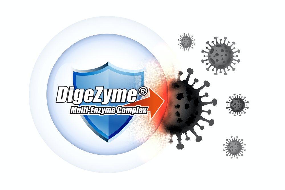 logotyp DigeZyme na tle tarczy