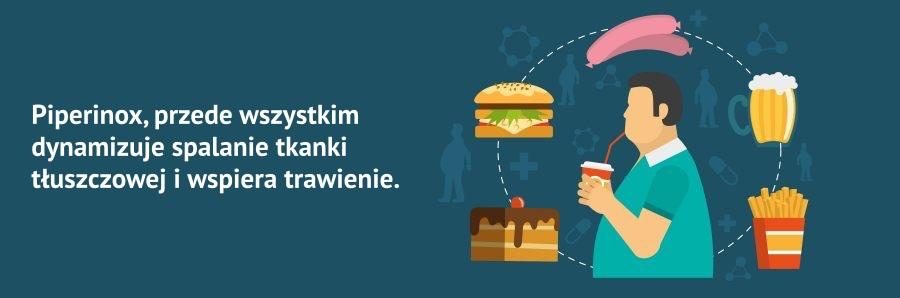 banner przedstawiający jedzeniowe przyczyny otyłości