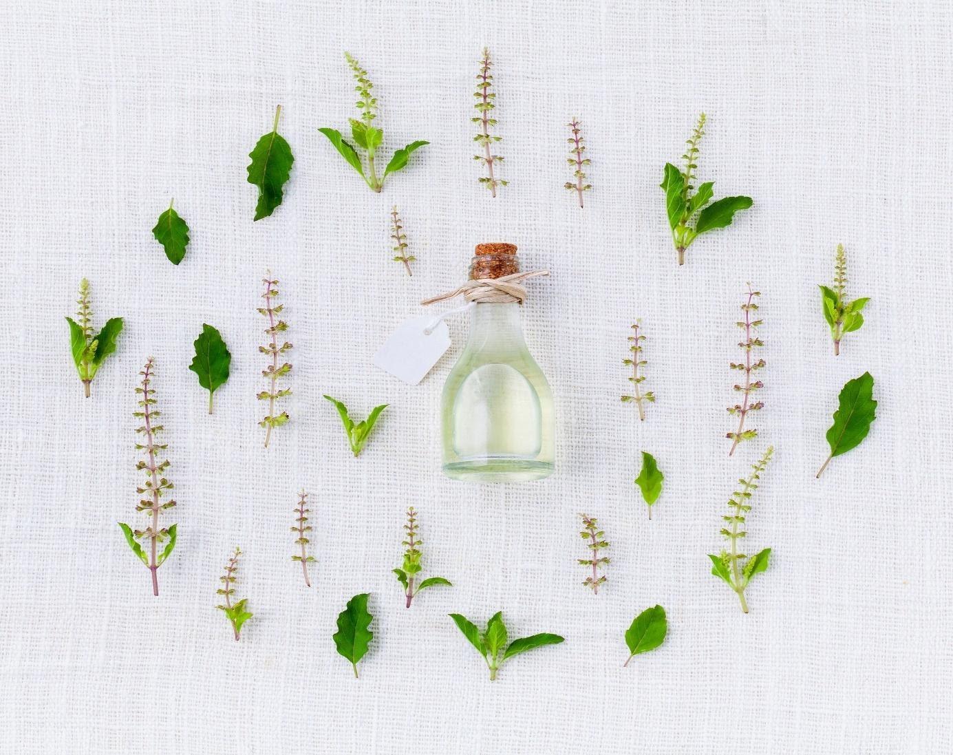 preparaty ziołowe do skóry twarzy